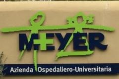 logo meyer scuola italiana osteopatia pediatrica